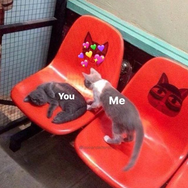 Yungsoul Love Memes Wholesome Memes Me As A Girlfriend
