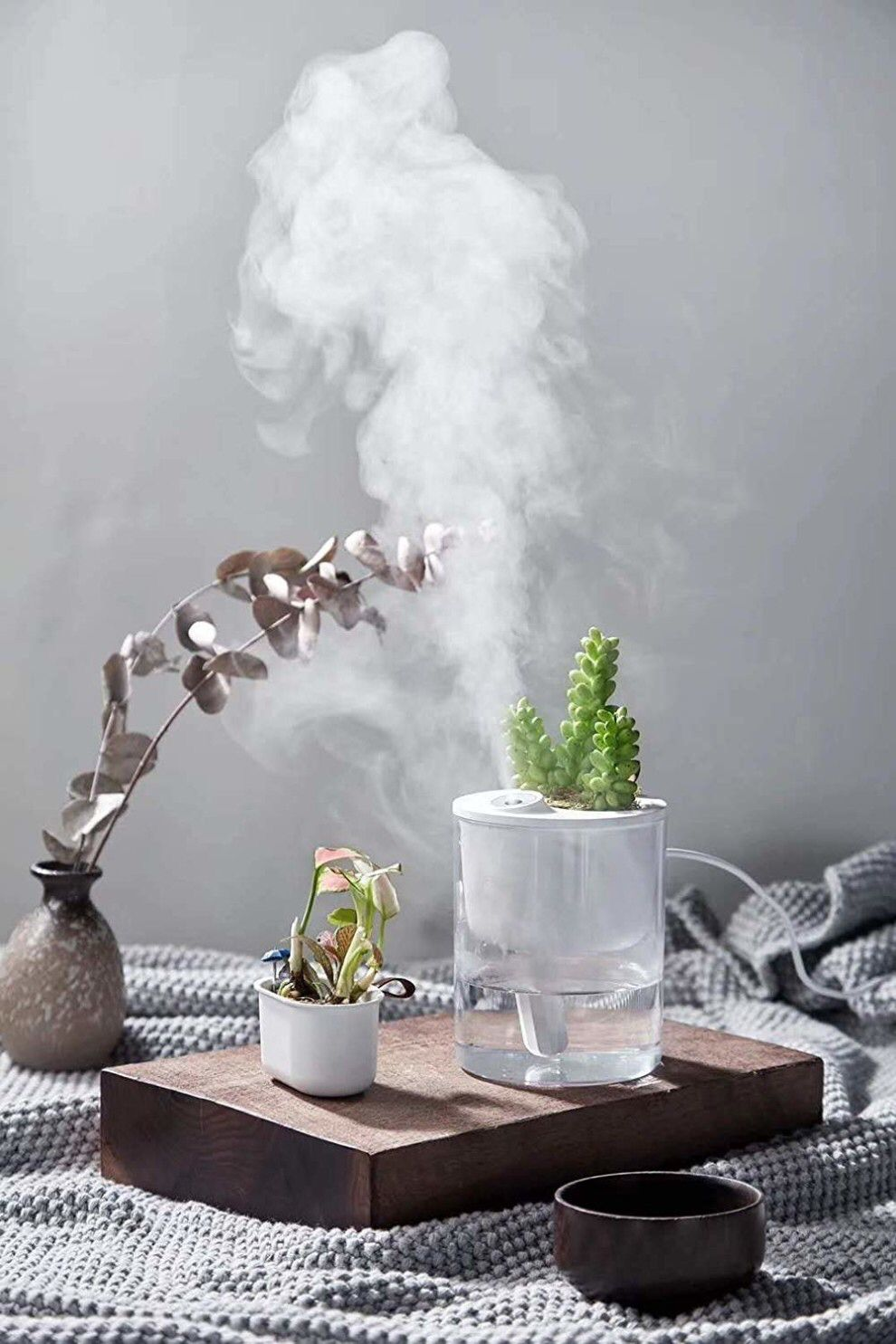 A desk humidifier with a builtin plant box, so you can