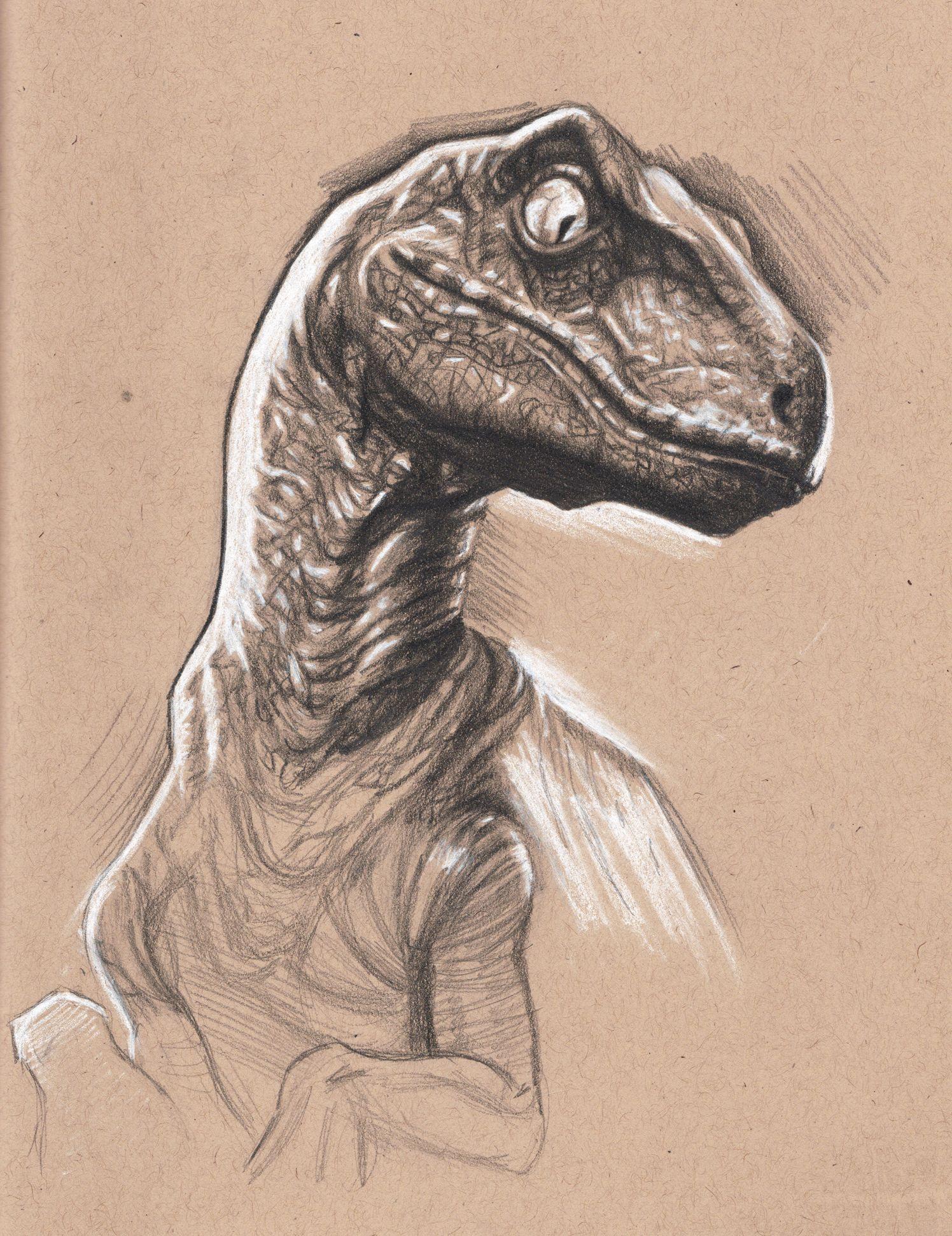 Lujoso Parque Jurásico Raptor Para Colorear Galería - Ideas Para ...