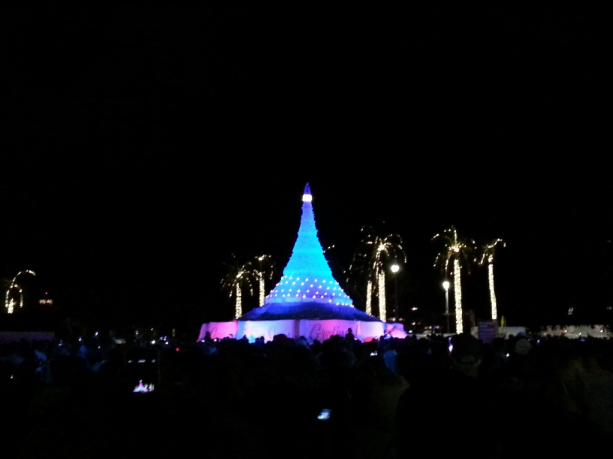 Hurray! @SandiTreeWPB is LIT... Happy Holidays to the thousands who came down to @Downtown West Palm Beach!