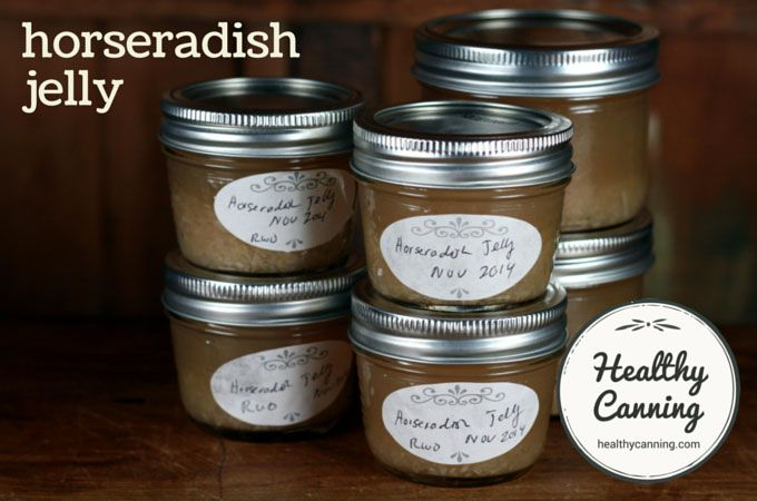 Horseradish Jelly Recipe Horseradish Jelly Recipe Jelly