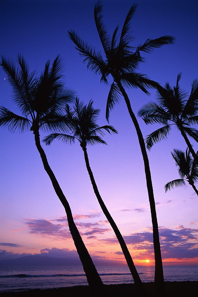 Bored of the usual commute home? Book your travel to Hawaii today on Expedia.com and this could be your end-of-day view.