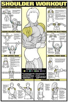 Printable Muscle Building Workout Chart