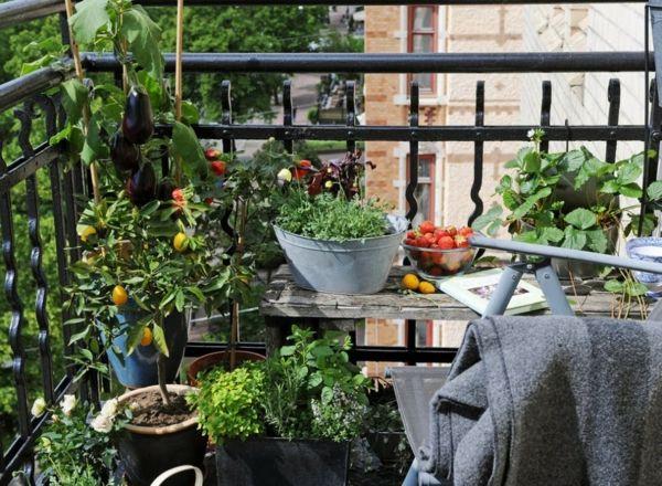 coole ideen für balkon pflanzen - einen garten auf balkon, Gartengerate ideen