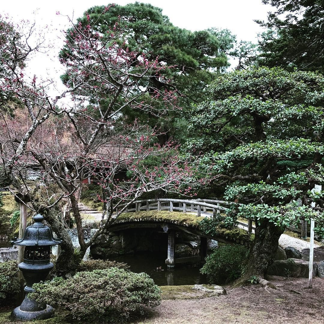 [New] The 10 Best Travel (with Pictures) -  Amazing place at the Kyoto Imperial Palace  ... #kyoto #japan #visitjapanjp #japanawaits #japan_vacations #photo_jpn #wondersofnippon #explorejapan #japandailies #explorejpn #japao #explorekyoto #photography #picoftheday #travel #日本 #にほん #nihon #fotografia #japanesegarden