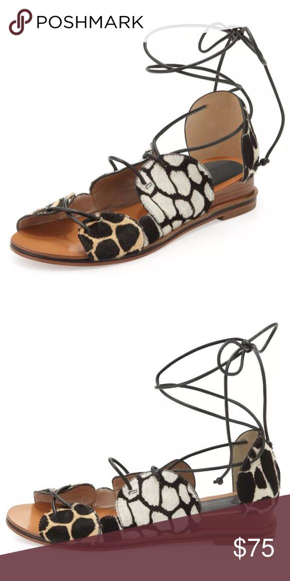 10 Crosby Derek Lam Penny Lace Up Gladiator Sandal Lace Up Gladiator Sandals Derek Lam Shoes Lace Up