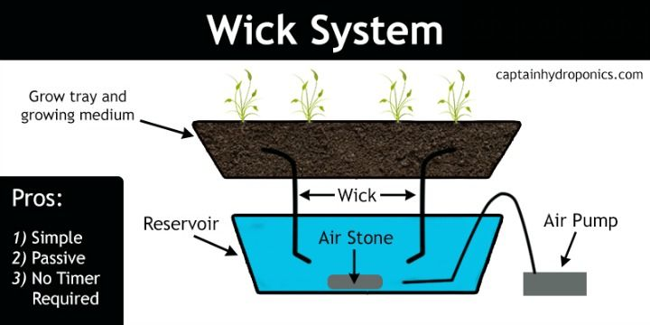 the wick system is probably the easiest kind of hydroponic system tothe wick system is probably the easiest kind of hydroponic system to get started with, and they require very little effort to maintain