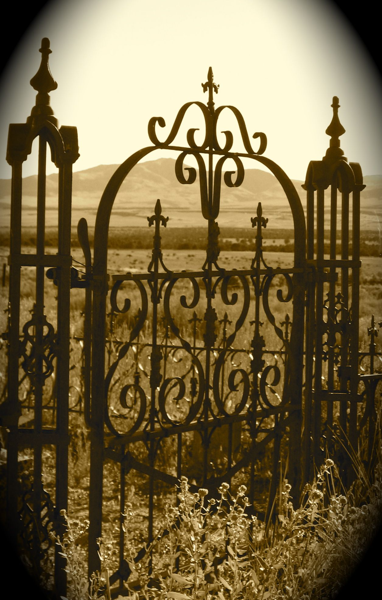 Old Fence Gate In Old Cemetery Old Cemeteries Angels