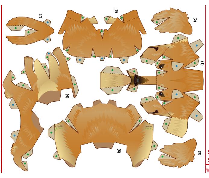 dachshund template formas pinterest dachshunds