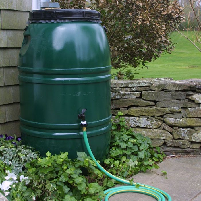Collecting Rainwater Illegal In Many States Video Of The Freedoms We Enjoy Here