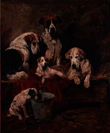 Image: John Emms - Kennel Companions