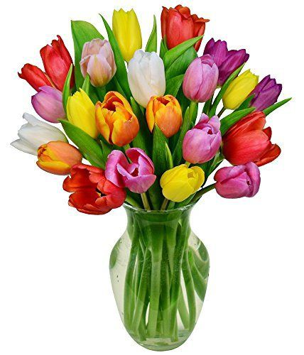 Easter Flowers Rainbow Tulip Bouquet 20 Stems Vase Included Flowersnhoney Fresh Flowers And The Best H Tulip Bouquet Flower Delivery Container Flowers