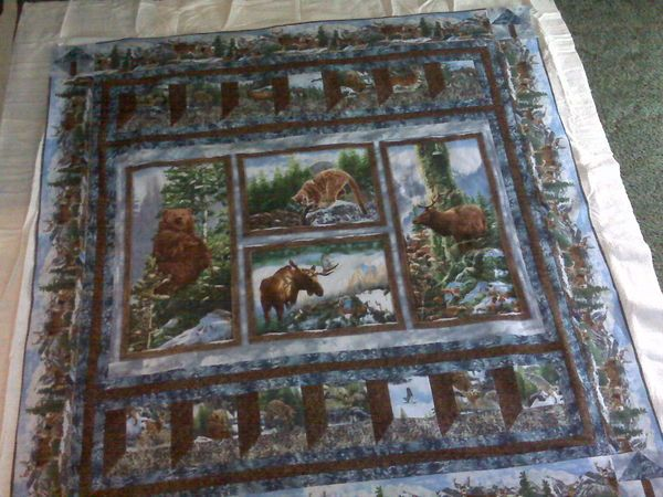 Using Fabric Panels in Quilts | Quilts | Pinterest | Fabric panels ... : quilt patterns with panels - Adamdwight.com