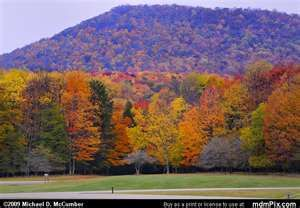 a nice autumn picture of Canaan Valley