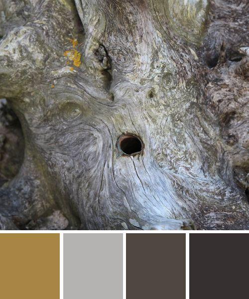 Farbkombinationen Blau Grau: Schöne Farben: Zart Graues Holz: Www.farbenergie.com