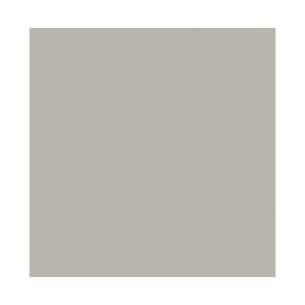 Best Decorati La Paloma Gray By Benjamin Moore Found On 640 x 480
