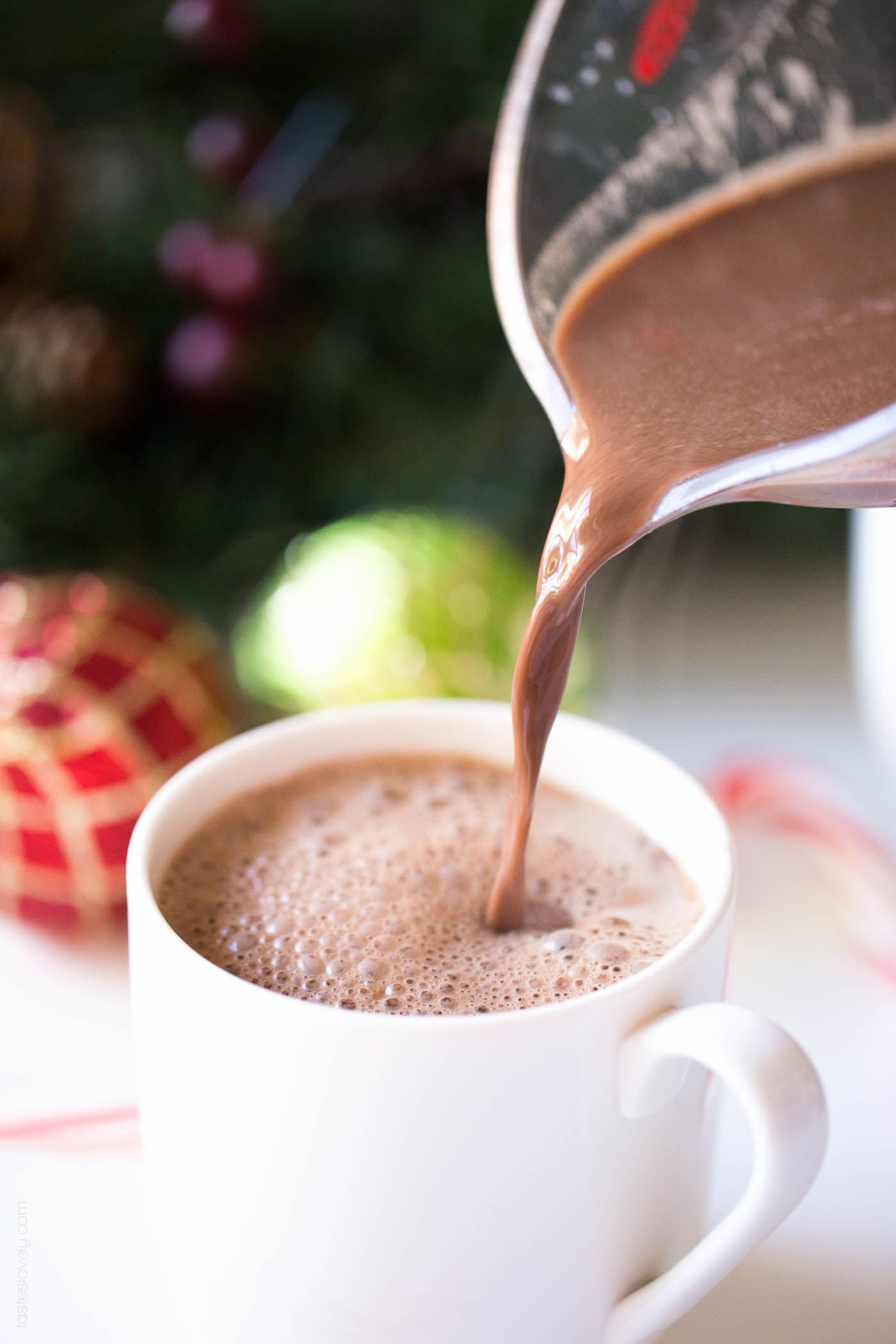 Dairy Free Hot Chocolate with Coconut Whipped Cream (Paleo