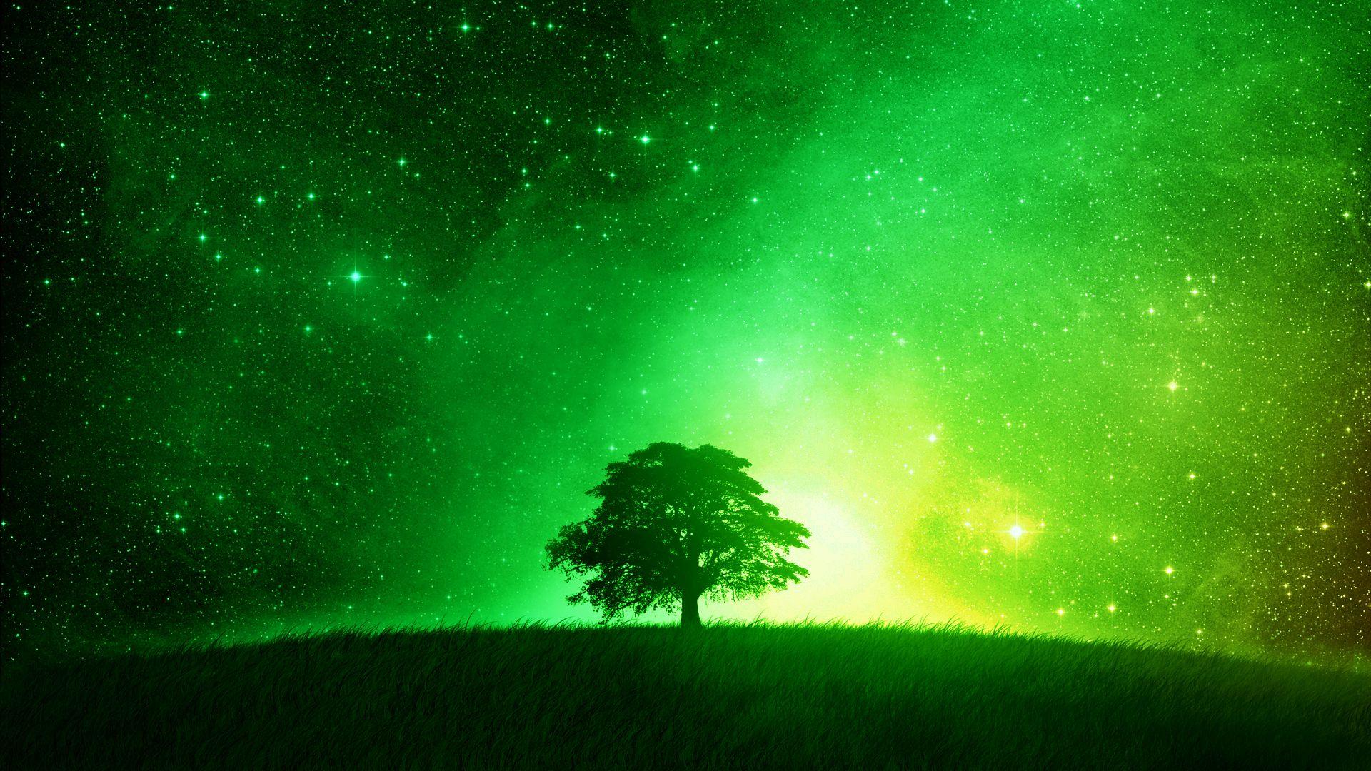 Green Wallpaper 1920x1080 (2470,04 Kilobyte 1920x1080 px
