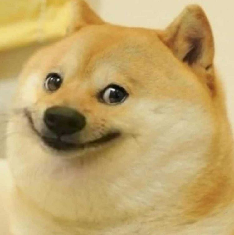 Pin By K R I N A On Meme Template In 2020 Doge Meme Dog Memes Dogs
