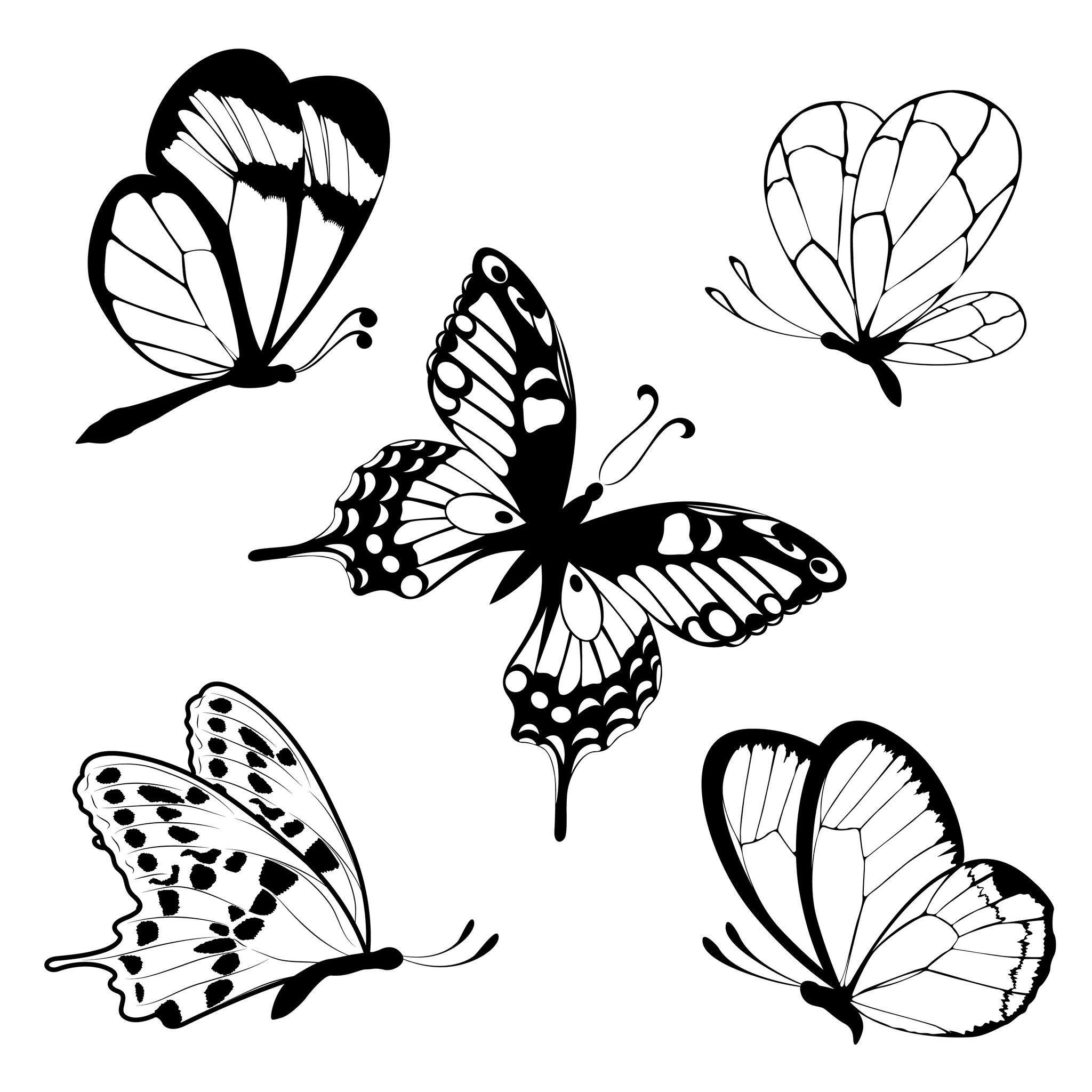 Coloriage Papillons Facile Coloriage Peinture Collage