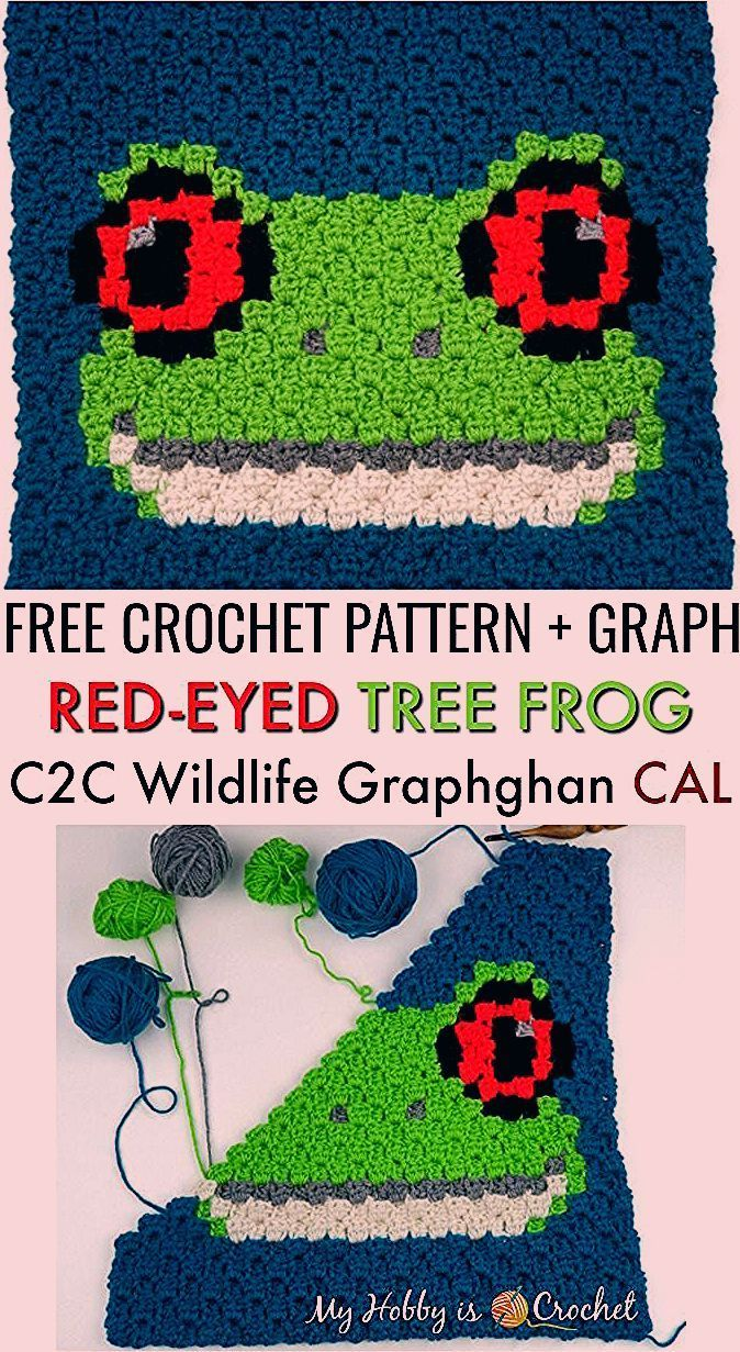 The Red-eyed Tree Frog it's a fun free c2c critter pattern on My Hobby is Crochet blog! This free crochet pattern includes written row by row instructions for color counts follow with color pixel graph. .... ... #crochet #freecrochetpatterns #c2ccrochet #pixelcrochet #myhobbyiscrochet #yarnspirations