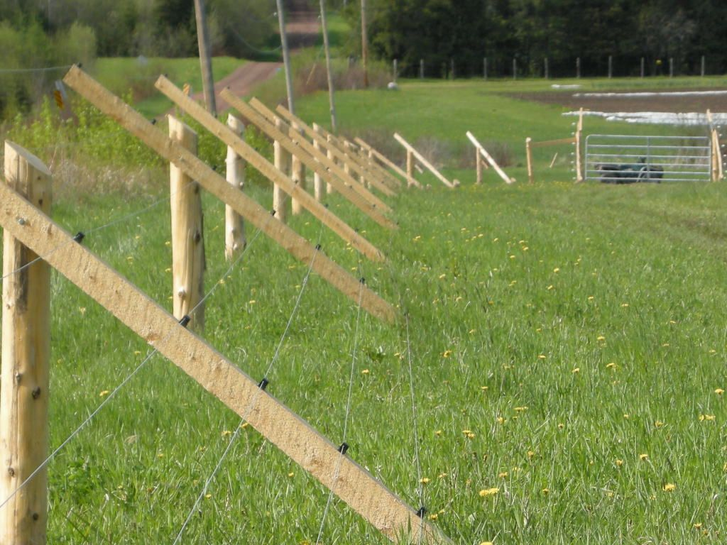 Vermont Slant #deer #fence « Sleepy G Farm : Ecologically Raised Food