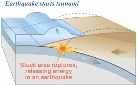 Anatomy Of A Tsunami Check Out The Video From Woods Hole Ocean