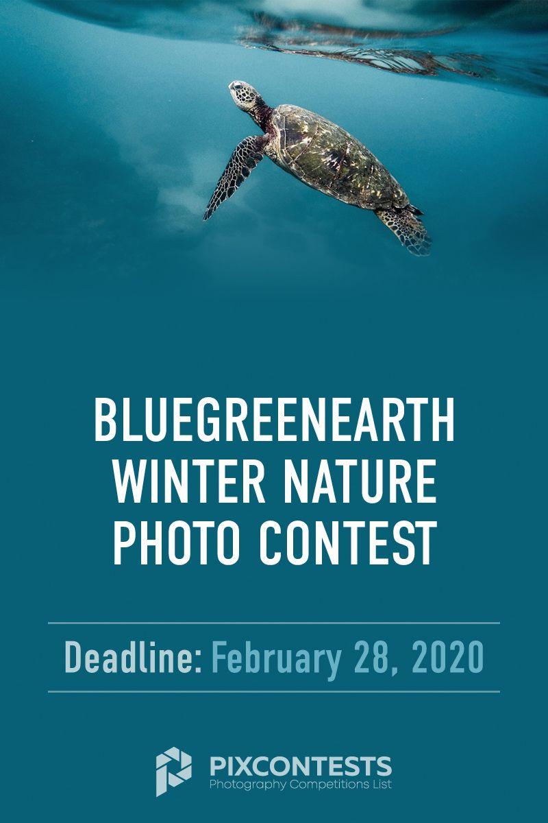 Deadline February 28 2020 Entry Fee Free Prizes 100 Bluegreenearth Winter Nature Photosontest Photo Contest Photog Photo Contest Photography Competitions Nature Photos