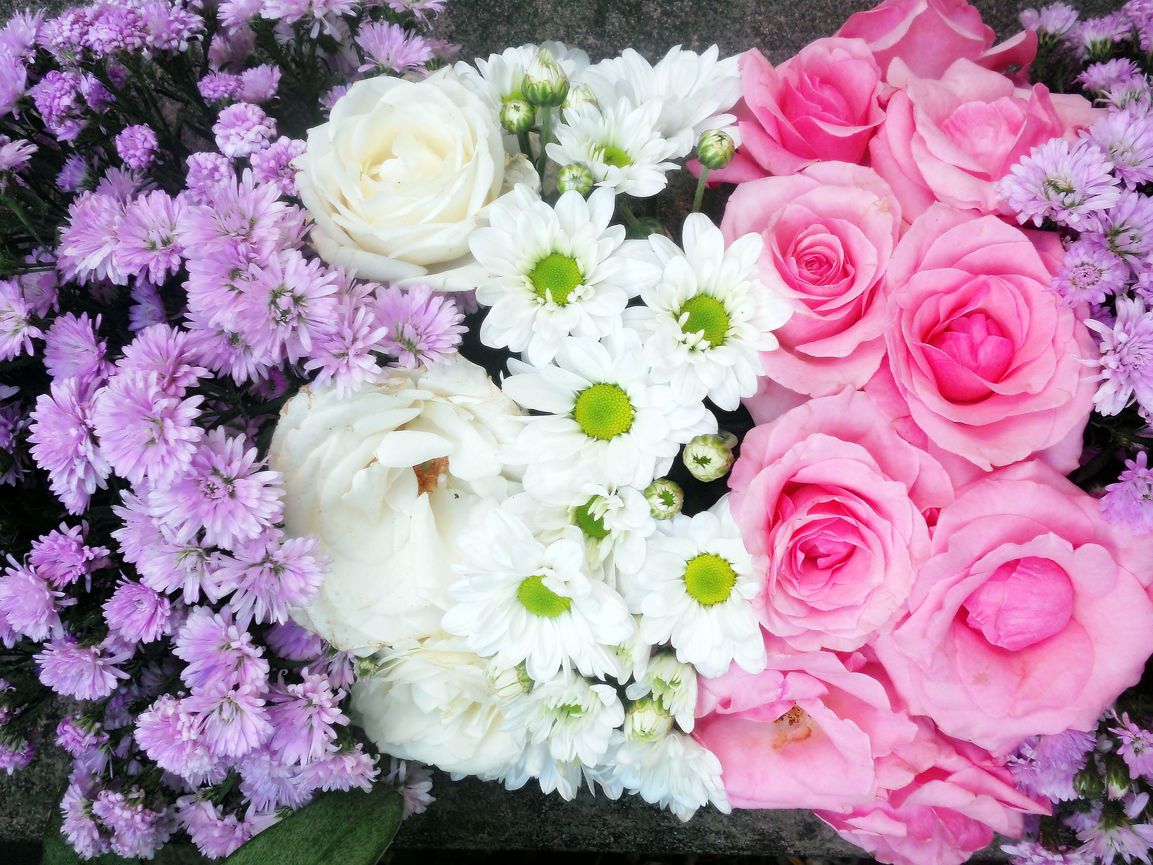 Rangkaian Bunga Yang Indah Rangkaian Bunga