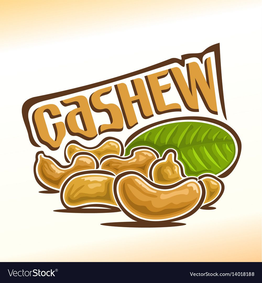 Logo for cashew nuts vector image on
