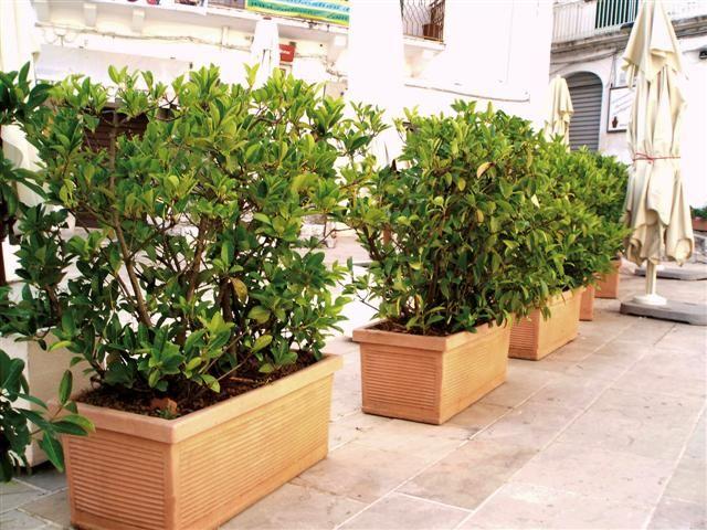 Jardineras de barro Jardineras Pinterest Jardineras, Barro y - jardineras modernas