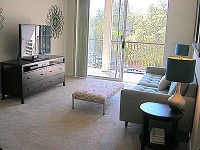 Nice Apartment Living Room Design