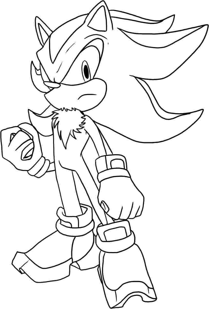 Shadow The Hedgehog Coloring Pages To Print The Idea For Shadow Originated During The Develo Hedgehog Colors Cartoon Coloring Pages Coloring Pages