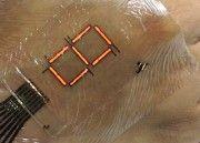 Sabías que LEDs ultradelgados convierten tu piel en una pantalla