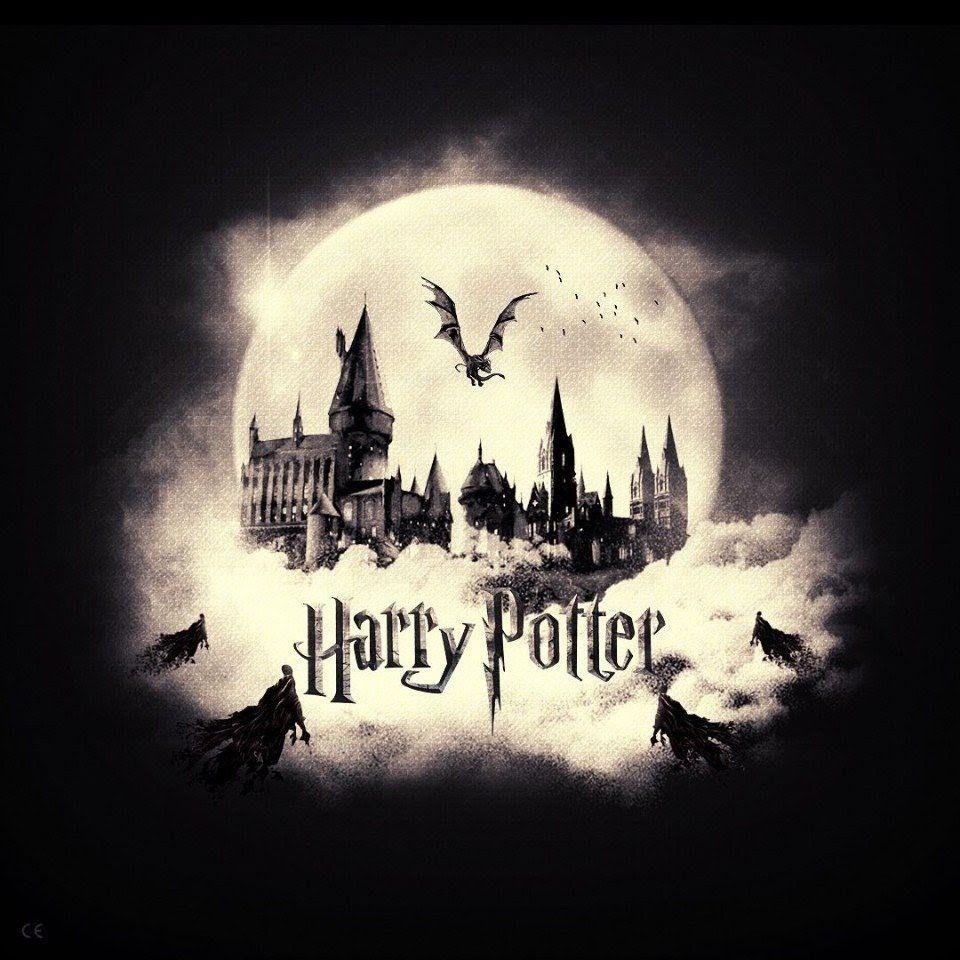 Pin De Ela Tabak En Harry Potter Arte De Harry Potter Fotos De Harry Potter Decoración Harry Potter