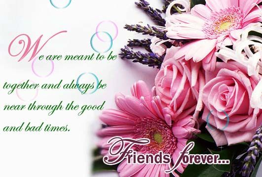 Tell your friends that you care through this amazing card :) #flowers #card #good #friends