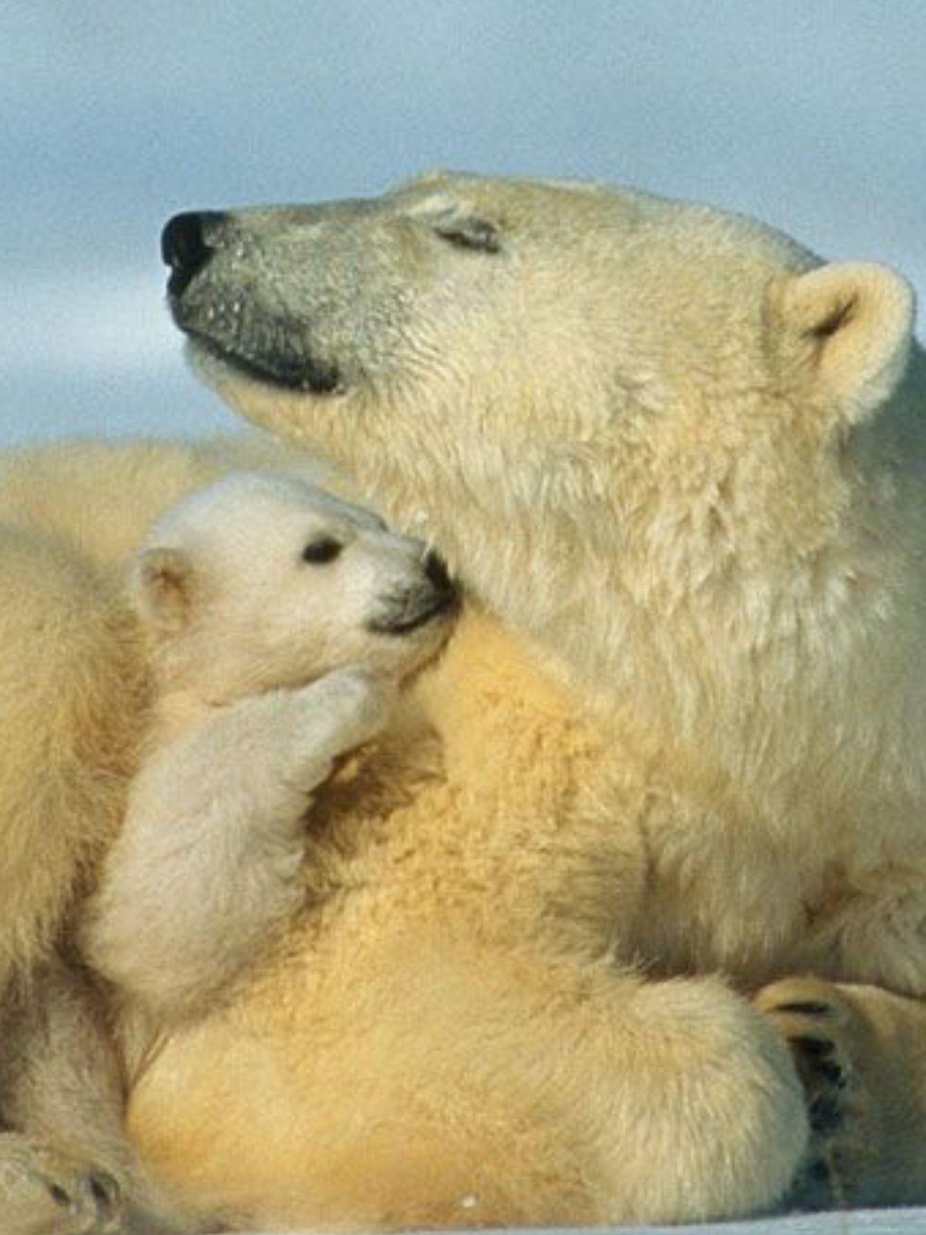 Mom scheint das Mommy sein sehr zu genießen!?!?