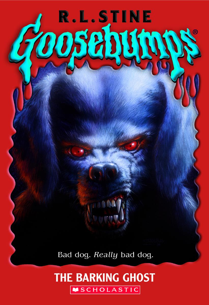Dog Barking At Door At Night
