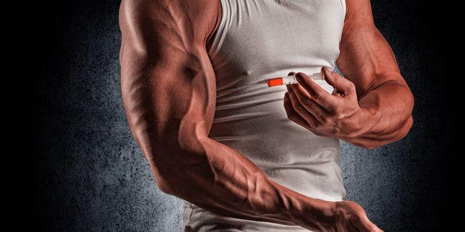 Androgen Receptors | Bodybuilding & Nutrition | Testosterone