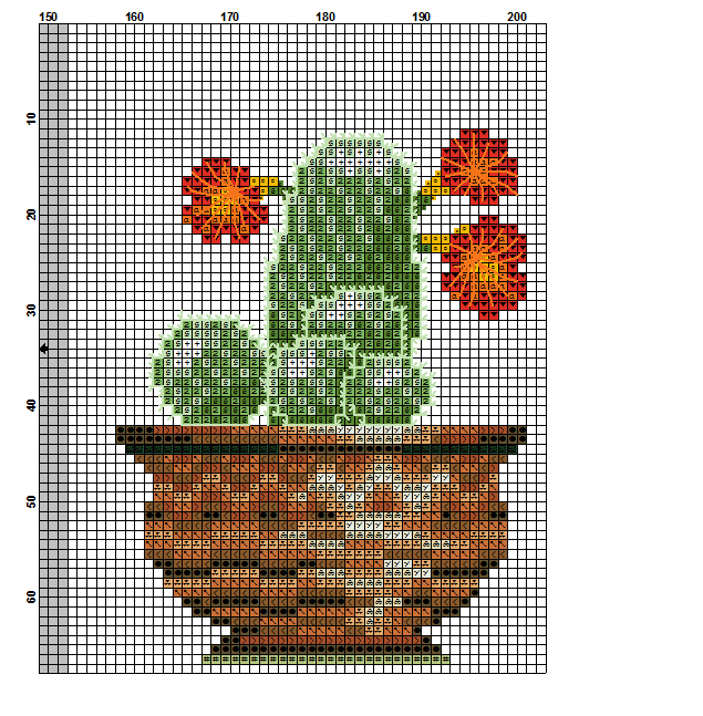kaktusy dd 6