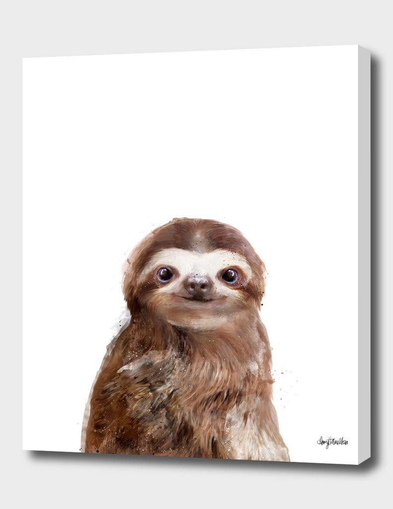 Little Sloth Canvas Print By Amy Hamilton Numbered Edition From 59 Curioos Sloth Art Sloth Animal Drawings