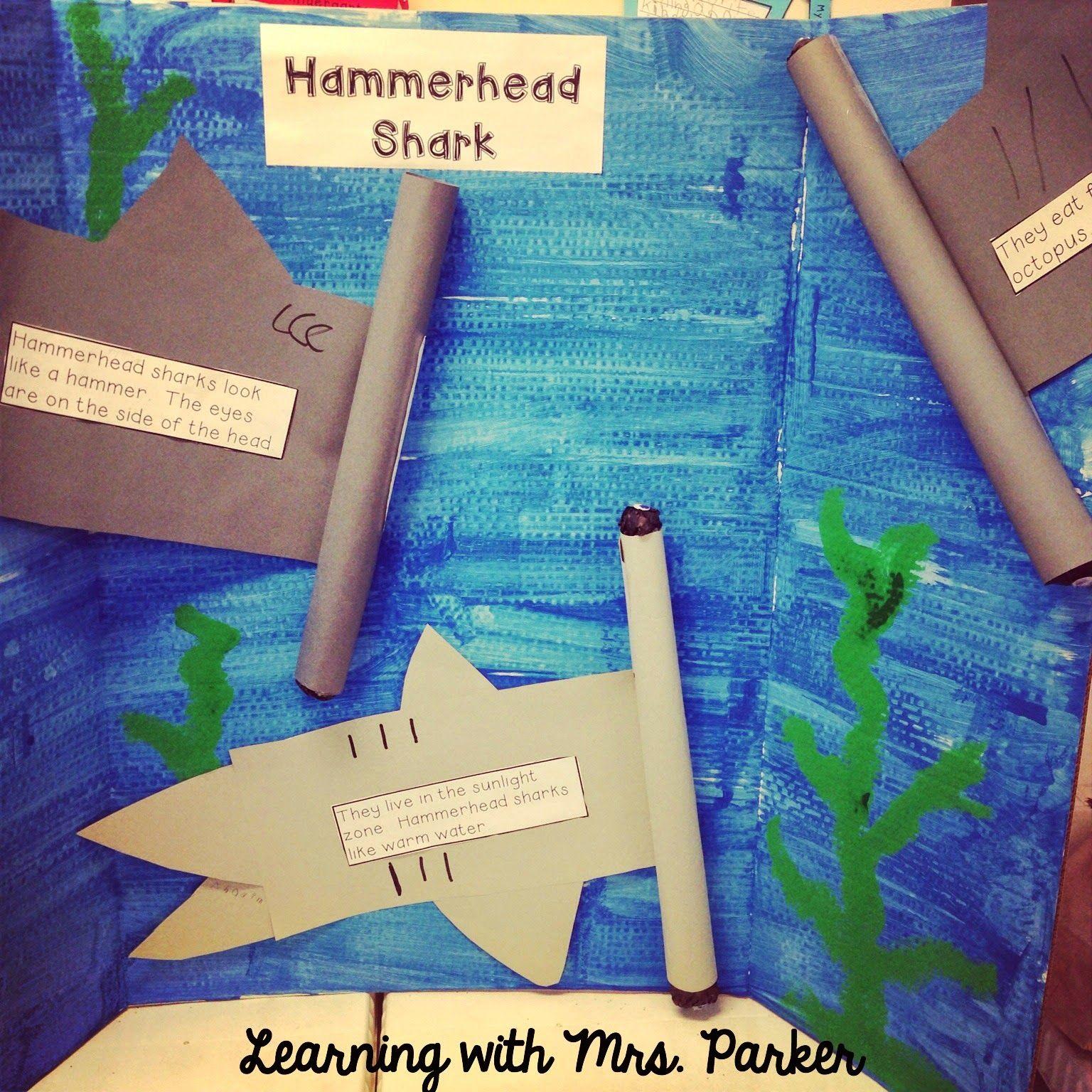 Hammerhead Shark Craft