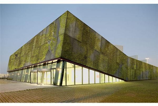 Barcelona researchers are developing concrete panels that encourage the growth of lichens, moss and fungi to absorb CO2, provide insulation and reduce the carbon footprint of urban structures.