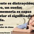 El presente es distracción; el futuro, un sueño. Sólo la memoria es capaz de desvelar el significado de la vida. -Dios Emperador de Dune - LaMemoria.jpg