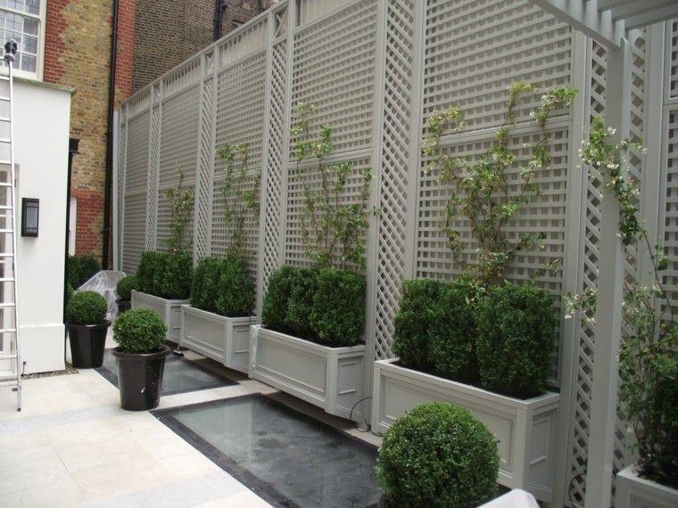 varias macetas con rejas para plantas trepadoras | jardinería