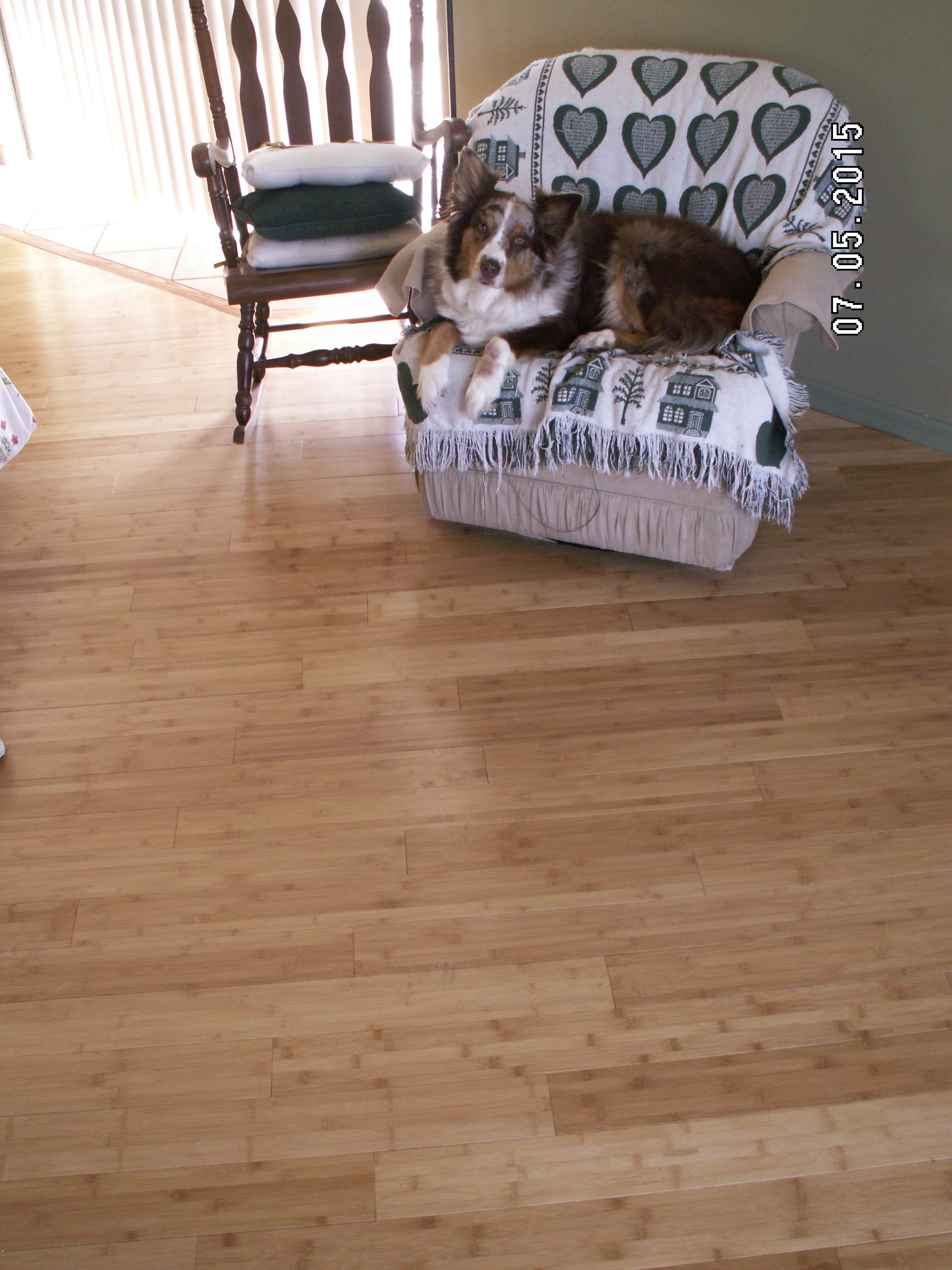 Pin by keb on bamboo floor pinterest