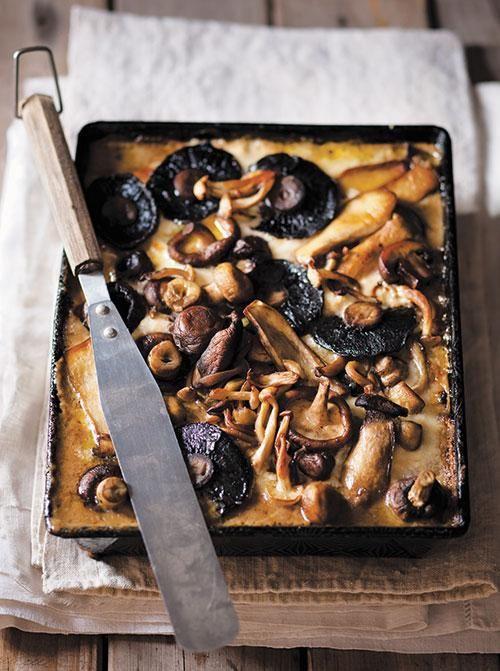 Fantastic mushroom lasagne / Fantastiese sampioen-lasagne THIS RECIPE IS WRITTEN IN AFRIKAANS.  Get Google to translate.