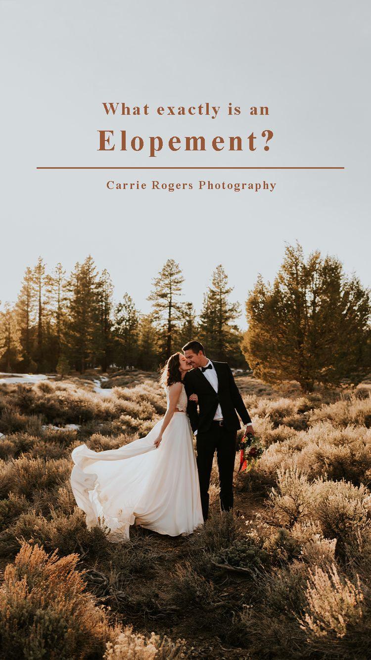 Pin On Elopement Resources