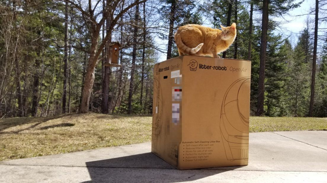 Litter Robot Review We Tried the Open Air III and