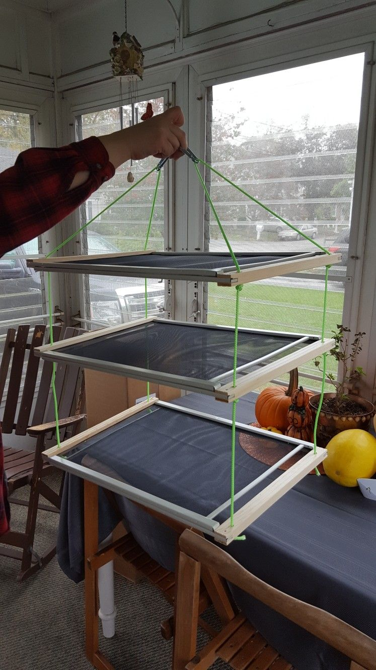 Diy herb drying rack with expandable window screens drill
